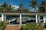 Esqueleto de una ballena en el Museo Marino de Margarita, ubicado en la ciudad de Boca del Río, la más grande de la Peninsula de Macanao. 2005. (Ramón Lepage / Orinoquiaphoto)  Skeleton of a whale in Margarita's Marine Museum, located in Boca del Río, the biggest city of the Peninsula de Macanao. 2005. (Ramon Lepage / Orinoquiaphoto)