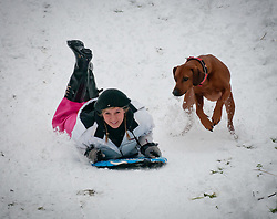© Licensed to London News Pictures. 05/02/2012. St Ives, Cambridgeshire, UK. First heavy snow falls in St Ives, Cambridgeshire, createan ideal toboggan run. Photo credit : Alan Bennett/LNP
