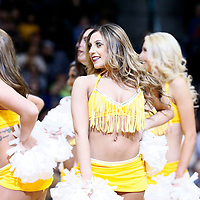 04 March 2017: The Denver Nuggets Dancers perform during the Charlotte Hornets 112-102 victory over the Denver Nuggets, at the Pepsi Center, Denver, Colorado, USA.