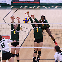 1st year setter Kirstin Greve (17) of the Regina Cougars in action during Women's Volleyball home game on November 19 at Centre for Kinesiology, Health and Sport. Credit: Arthur Ward/Arthur Images