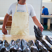 Fishmonger at Funchal's Farmer's Market
