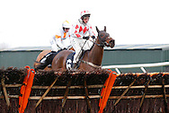 Plumpton, UK, 16th January 2017<br /> Kid Kalanisi rider by Jamie Moore approach the last before landing the 'My Timeform' On The Timeform App Handicap Hurdle at Plumpton Racecourse.<br /> &copy; Telephoto Images / Alamy Live News