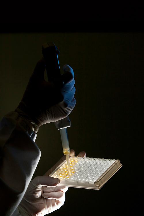 Belo Horizonte_MG, Brasil...Laboratorio de BioTecnologia Katal. Na foto detalhe da mao de um pesquisador com tubo de ensaio...Katal biotechnology laboratory. In this photo, detail of a researcher hand with a vial...FOTO: LEO DRUMOND /  NITRO.