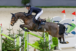 MÄNDLI Beat (SUI), Debatsja<br /> Genf - CHI Geneve Rolex Grand Slam 2019<br /> Prix des Communes Genevoises<br /> 2-Phasen-Springen<br /> International Jumping Competition 1m50<br /> Two Phases: A + A, Both Phases Against the Clock<br /> 13. Dezember 2019<br /> © www.sportfotos-lafrentz.de/Stefan Lafrentz