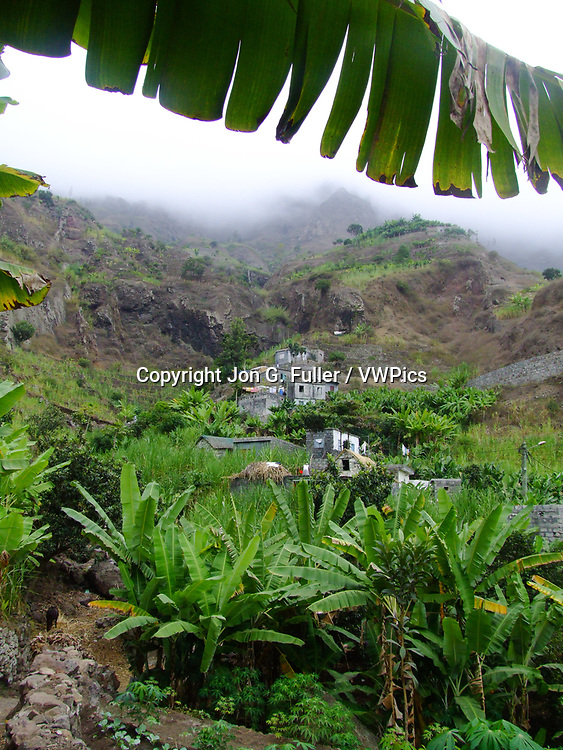 Banana plants in the Valley of Paul, Santo Antao, Republic of Cabo Verde, Africa.