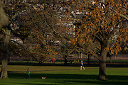 Pet owner walks her dog and a male jogger runs through his local park in the London Borough of Lambeth.