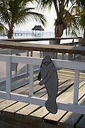 Belize, Central America - Chocolate's Manatee Marine conservation tours and building is decorated with cute Manatee signs on Caye Caulker.