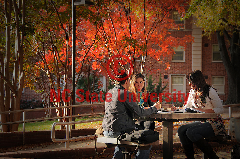 Students study between classes on Central Campus.