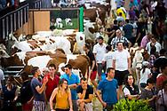 24/05/17 - BESANCON - DOUBS - FRANCE - Montbeliard Prestige 2017 - Photo Jerome CHABANNE