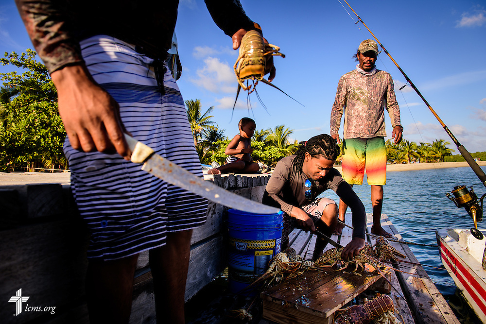 Fisherman flay fresh lobsters at the pier on Wednesday, Sept. 28, 2016, in Placencia, Belize. The rich marine life provide an industry for local fishermen. LCMS Communications/Erik M. Lunsford