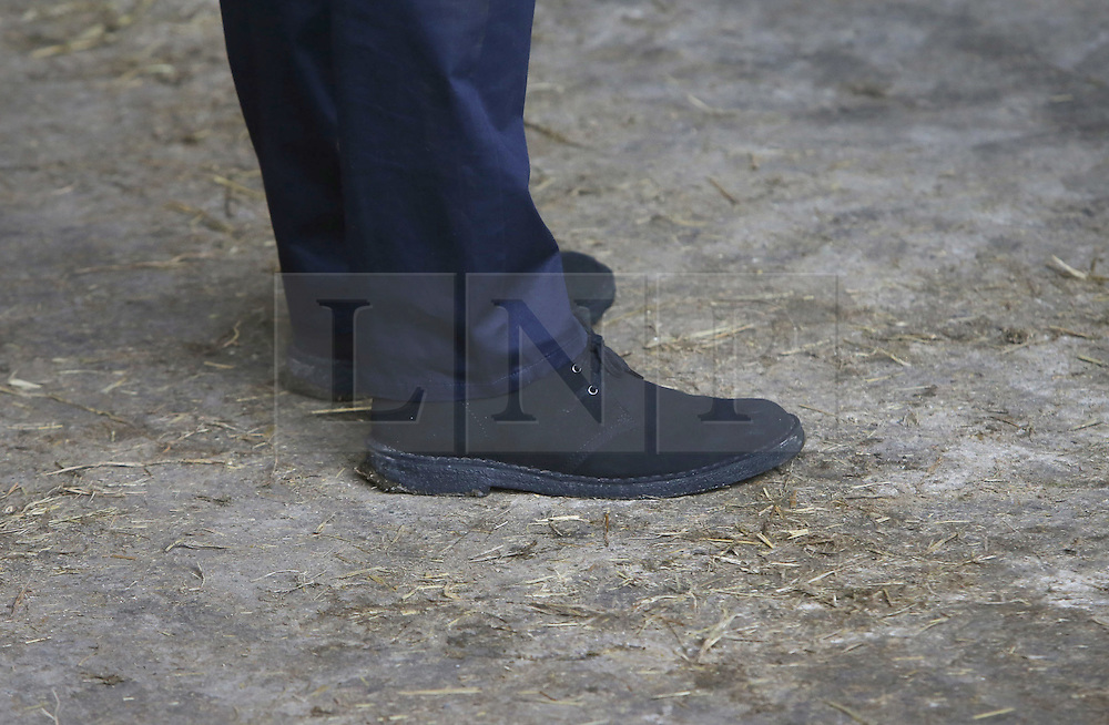 Photo/Paul McErlane© Licensed to London News Pictures. 27/02/2016. Ahoghill, County Antrim, Northern Ireland, UK. Prime Minister David Cameron walks about on a dairy farm in Ahoghill, County Antrim. The Prime Minister was on a tour to persuade voters that membership of a reformed EU is in their best interests. Photo credit : Paul McErlane/LNP