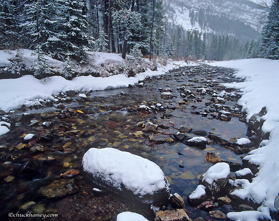Cameron Creek in winter in Waterton Lakes National Park in Alberta Canada