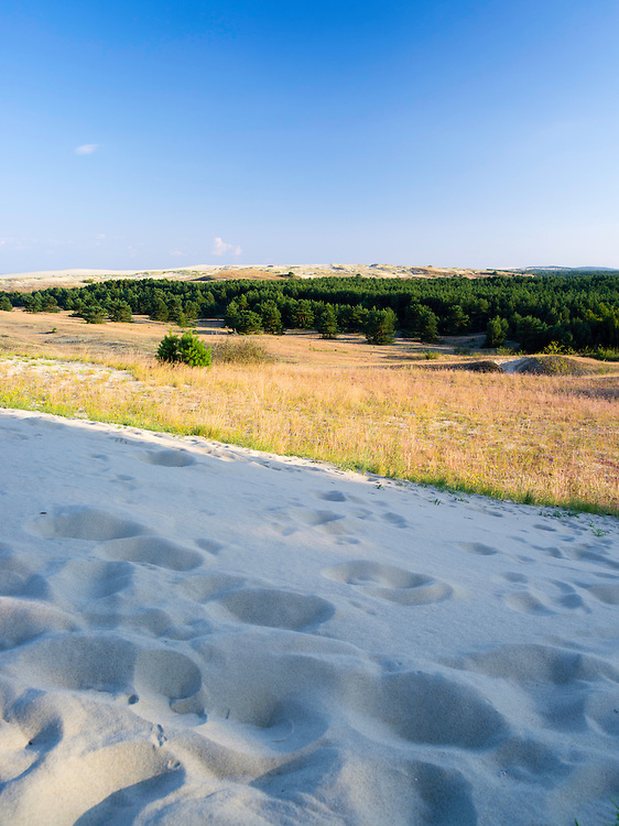 Evening falls over the Nida Dunes/Nidos Kopas, on the Curonian Spit, Lithuania
