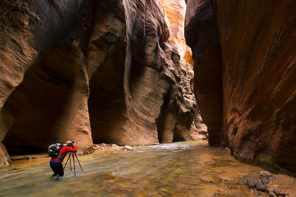 Hiker taking pictures in the Virgin River Narrows, Zion National Park, Utah
