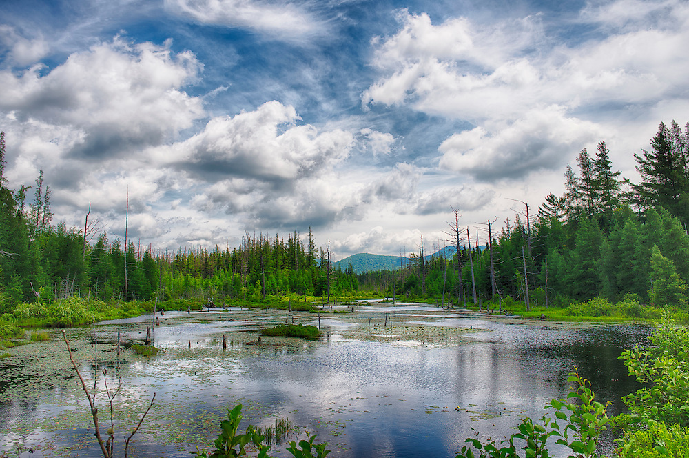 Panorama from Fishole Pond near Loon Lake in the Adirondack Mountains of New York