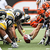 Steelers @ Bengals<br /> November 13, 2011<br /> &copy; Brad Schloss