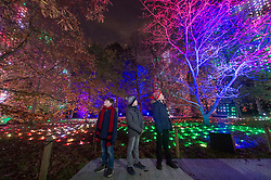 © Licensed to London News Pictures. 19/11/2019. London, UK. Guests enjoy the annual Kew Gardens Christmas Lights display. Photo credit: Ray Tang/LNP