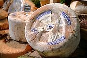 28 Ottobre 2006 Salone del Gusto di Torino <br />  Ph. Luigi Bertello / Pho-to.it