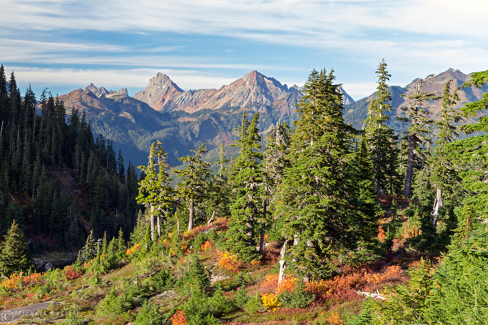 Sunlight on the North Cascades border peaks and the forest near Heather Madows in the Mount Baker-Snoqualmie National Forest, Washington State, USA