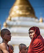 Buddhist monks talking in front of golden stupa (Myanmar)