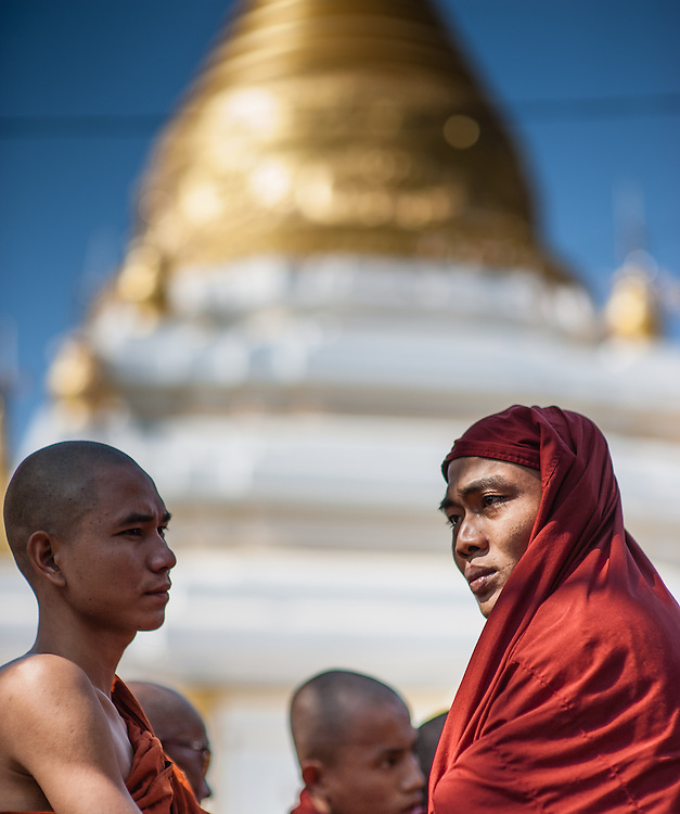 Buddhist monks talking in front of golden stupa (Myanmar)