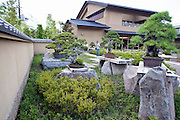 Photo shows bonsai trees on display at the Saitama Omiya Bonsai Museum of Art in Saitama, Japan on 15 Aug. 2011..Photographer: Robert Gilhooly