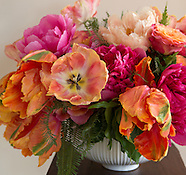 Peonies and Parrot Tulips
