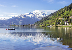 THEMENBILD - ein Schwan schwimmt im ruhigen Wasser des Zeller Sees, aufgenommen am 19. Mai 2019, Zell am See, Österreich // a swan swims in the calm water of the Zeller lake on 2019/05/19, Zell am See, Austria. EXPA Pictures © 2019, PhotoCredit: EXPA/ Stefanie Oberhauser