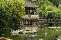 The Japanese garden situated within the surrounding area of Hatley Park attracts visitors  to its peaceful and tranquil setting.  Victoria, Vancouver Island, British COlumbia, Canada.