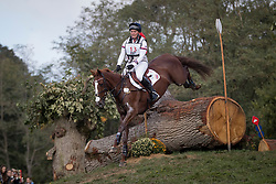 Tattersall Gemma, GBR, Chillis Gem<br /> World Championship Young Eventing Horses<br /> Mondial du Lion - Le Lion d'Angers 2016<br /> © Hippo Foto - Dirk Caremans<br /> 22/10/2016