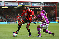 Football - 2016 / 2017 Premier League - AFC Bournemouth vs. Hull City<br /> <br /> Bournemouth's Joshua King shields the ball from Curtis Davies of Hull City at Dean Court (The Vitality Stadium) Bournemouth<br /> <br /> Colorsport/Shaun Boggust