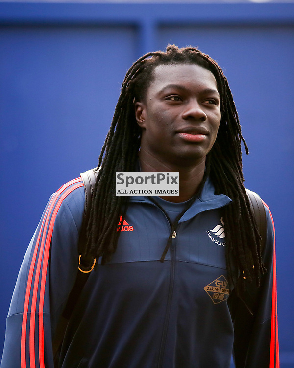 Bafetimbi Gomis of Swansea City for the Crystal Palace vs Swansea game on Monday the 28th December 2015.