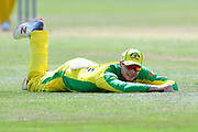 Steven Smith of Australia looks up after diving to stop a ball during the ICC Cricket World Cup 2019 match between Afghanistan and Australia at the Bristol County Ground, Bristol, United Kingdom on 1 June 2019.