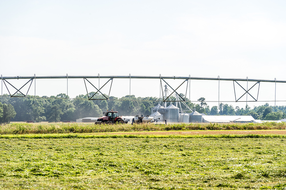 A tractor moving through a field of crops next to a pivot irrigation system.