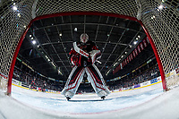 KELOWNA, BC - FEBRUARY 08: Taylor Gauthier #35 of the Prince George Cougars stands in net against the Kelowna Rocketsat Prospera Place on February 8, 2019 in Kelowna, Canada. (Photo by Marissa Baecker/Getty Images)