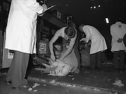 Sheep Shearing and Fleece Rolling Competition. (R57)..1987..07.05.1987..05.07.1987..7th May 1987..The International Sheep Shearing Championship was held today at the RDS in Dublin. A second part of the competition involved the rolling and tying of the fleece once the sheep is sheared...Image shows John Davies ,Wales,winner of the Sheep  Shearing section of the competition in action as he is studied by the competition officials.