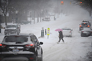 NORTHVILLE - FEBRUARY: Audrey Belton from Plymouth walk home during the snowstorm late Sunday afternoon February 1, 2015 in Plymouth. (Photo by Bryan Mitchell/Special to The Detroit News)
