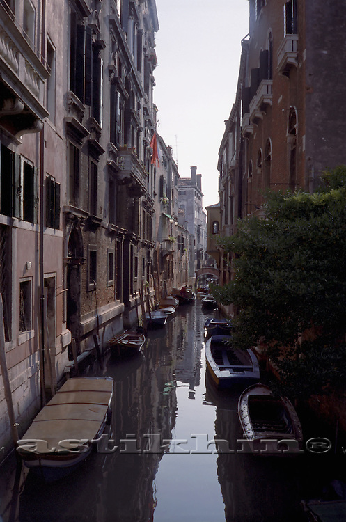 Road of Venice