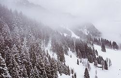 THEMENBILD - Bäume bei Schneefall und Nebel in der winterlichen Landschaft, aufgenommen am 02. Februar 2019 in Riezlern, Oesterreich // Trees during snowfall and fog in the winter landscape in Riezlern, Austria on 2019/02/02. EXPA Pictures © 2019, PhotoCredit: EXPA/ JFK