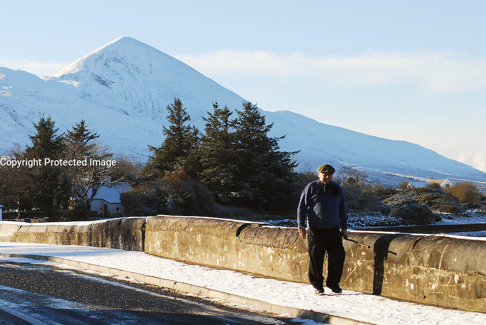 Perfect Walking Weather, but of course bring a stick,..Pic Conor McKeown.