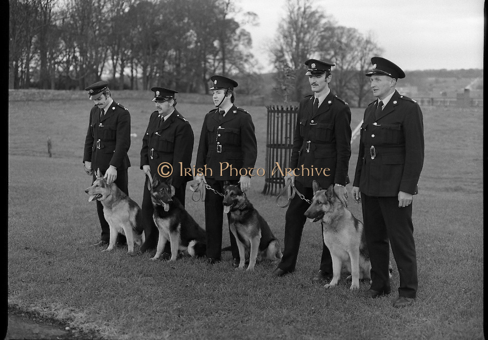 New Garda Dogs.   (N2)..1979..22.11.1979..11.22.1979..22nd November 1979..Today saw the passing out of four new Garda Dogs for the Garda Canine unit.The event was held at the Royal Hospital, Kilmainham..Image shows the four new Garda recruits with their handlers on parade for the media.(L-R).Garda Pat Griffin, Tralee,Co Kerry with 'Sam', Garda Vincent Turner, Limerick with 'Glenn',Garda John Culkin, Ballina,Co Mayo with 'Rover', Garda Thomas Donnelly,Raheny, Dublin with Duke and Sergeant Brendan Maher,Wexford who is in charge of the canine unit.