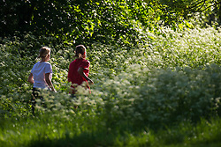 Women run through the Queen Anne's Lace as a beautiful morning greets Londoners in Regents Park. London, May 09 2018.