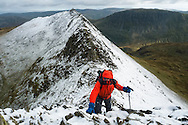 Reaching the top of the final scramble from Striding Edge