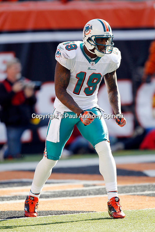 Miami Dolphins wide receiver Brandon Marshall (19) gets set to go out for a pass during the NFL week 8 football game against the Cincinnati Bengals on Sunday, October 31, 2010 in Cincinnati, Ohio. The Dolphins won the game 22-14. (©Paul Anthony Spinelli)