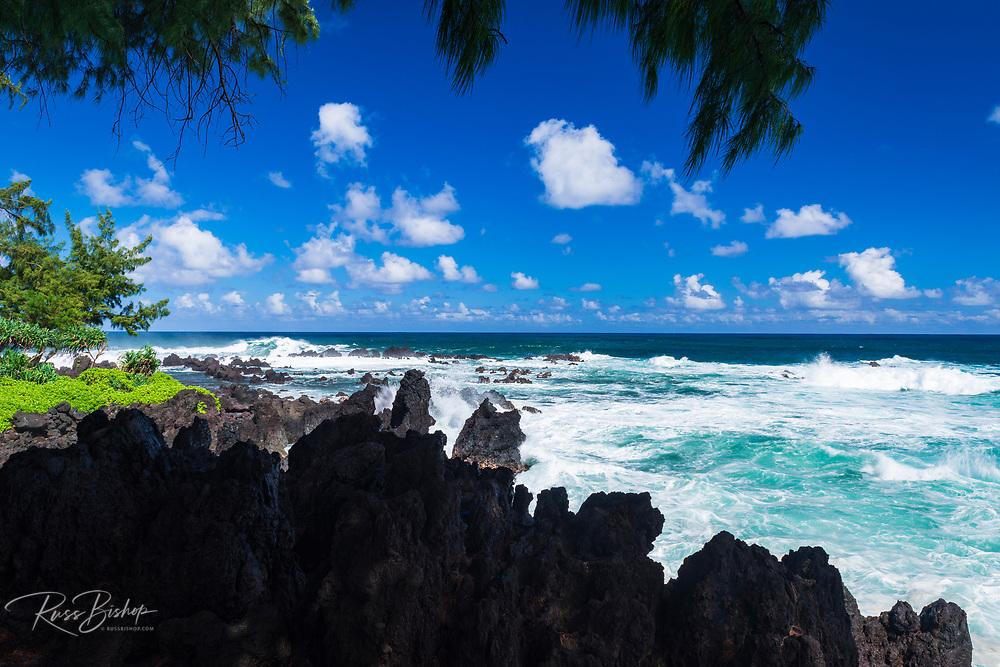 Rocky shoreline and surf at Laupahoehoe Point Park, Laupahoehoe, The Big Island, Hawaii USA