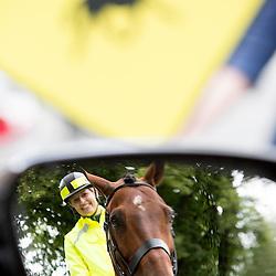 RSA Horse Safety