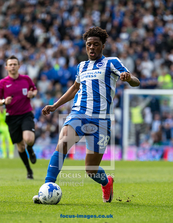 Chuba Akpom of Brighton &amp; Hove Albion during the Sky Bet Championship match at the American Express Community Stadium, Brighton and Hove<br /> Picture by Liam McAvoy/Focus Images Ltd 07413 543156<br /> 01/04/2017