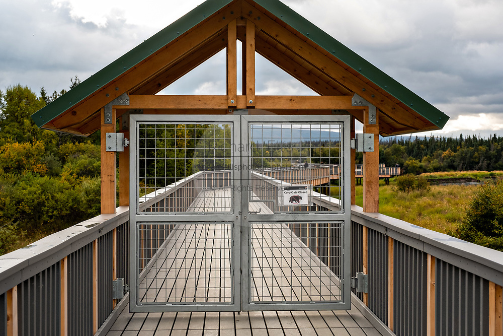 The new observation bridge and walkway over the lower Brooks River at Katmai National Park and Preserve September 16, 2019 near King Salmon, Alaska. The new observation platforms and bridges were installed during the winter of 2019 at a cost of more than $6 million dollars in the remote park know for one of the largest concentrations of bears in the world.