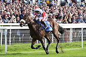 Horse Racing York Racecourse Coral Sprint Trophy 121019