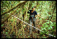 08: RAINFOREST RESCUE AL GENTRY IN DECIDUOUS FOREST